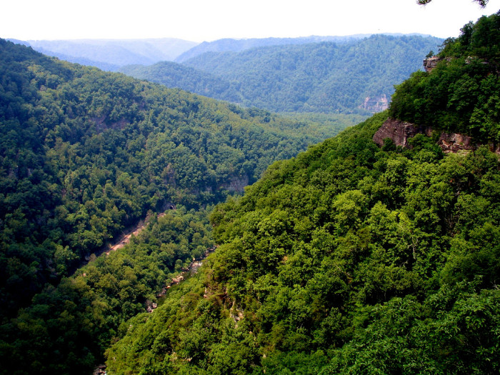 4. Dickenson County (#130) - includes Clinchco, Clintwood, Haysi, Nora and Caney Ridge