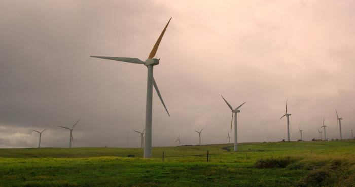 10) Does a wind farm evoke the same charm as a traditional one?