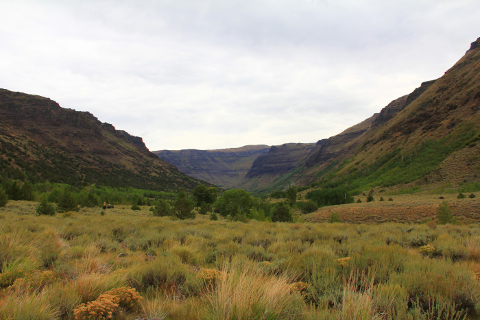 7) East Steens Tour Route