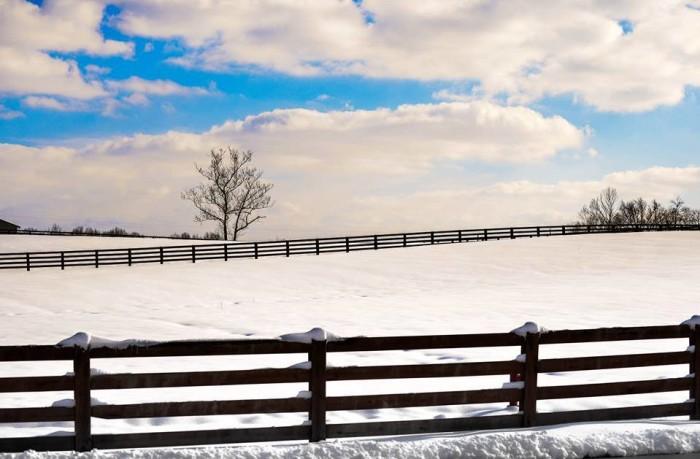 7. Eastern Kentucky Winter