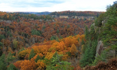 4) Fall Colors at the Gorge