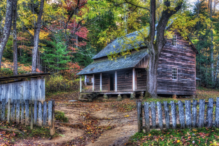 6) Most cities and quite a few small towns offer fall foliage tours.