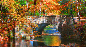 14 Undeniable Signs That Fall Is Almost Here In Virginia