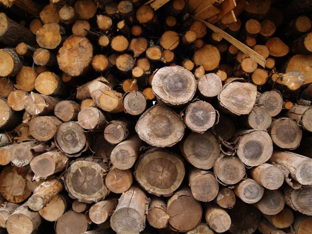 6. Gather Wood or Refill Gas Tanks