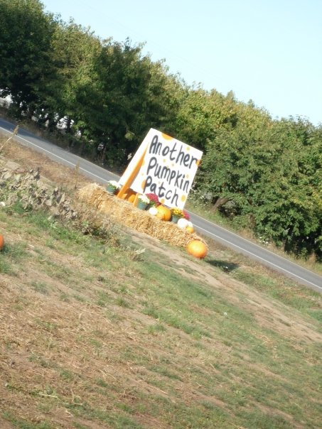 7) Heiser's Pumpkin Patch, Dayton