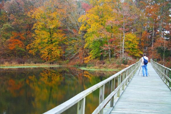 10. Known for providing a scenic backdrop, Holmes County State Park is a photographer's paradise.