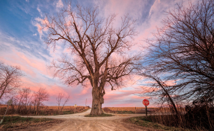 10 Country Roads In Iowa For An Unforgettable Scenic Drive