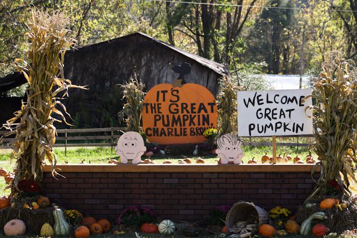 4. Peanuts Pumpkin Patch Express