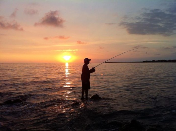 20) Kyle Pang took this photo while fishing at Spencer's Beach Park, in Kawaihae.