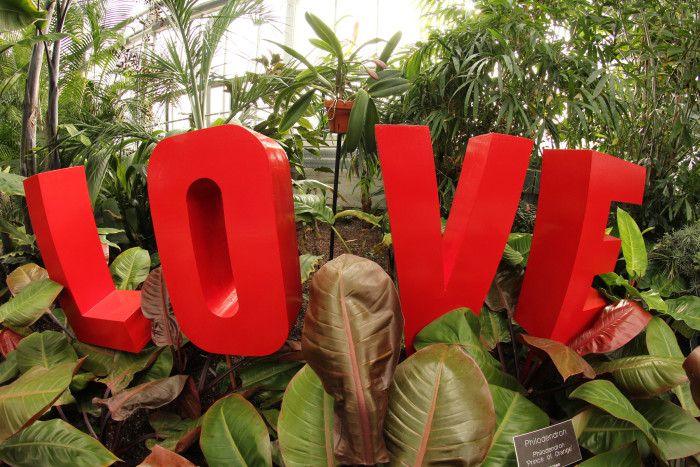 10. Find Love at a Botanical Garden.