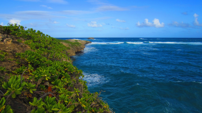 6) Laie Point, located on Oahu's eastern shore, is a wonderful little peninsula lined with vacation rentals, stellar views, and some great cliff jumping spots.