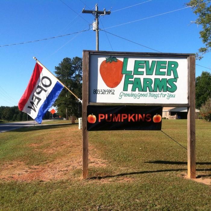 12. Lever Farms