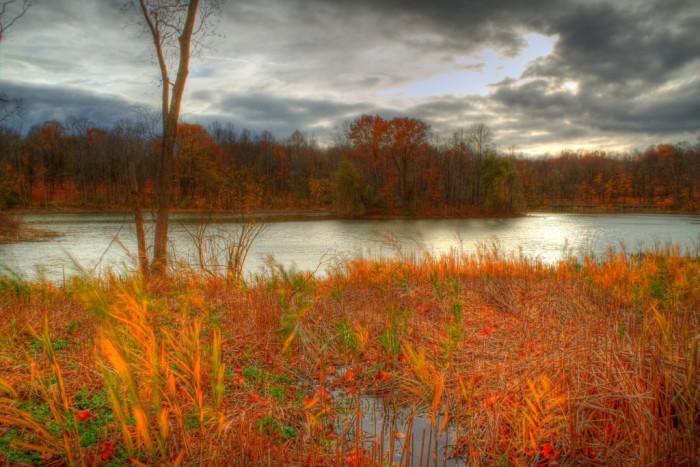 10) Maybury State Park