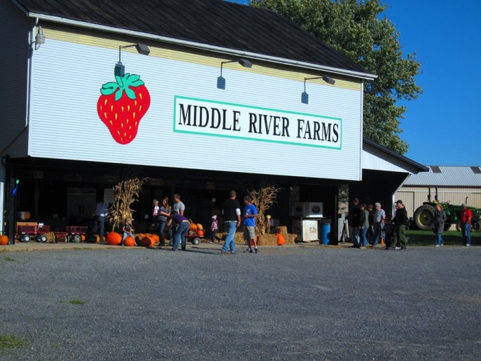 9. Middle River Farms, Grottoes