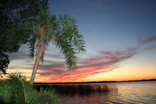 10. Lake Tarpon
