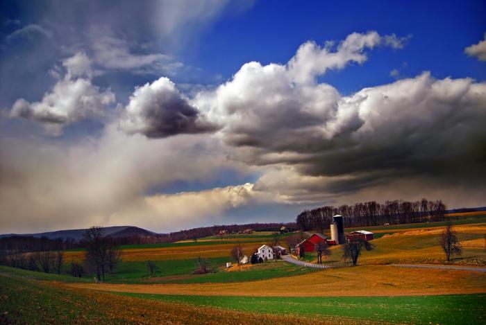 13. Acres Of Farmland
