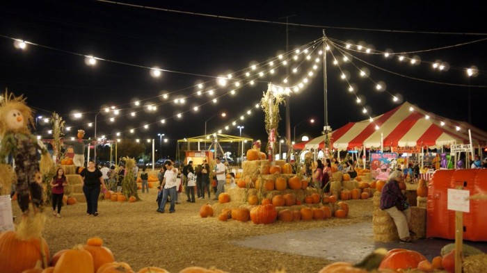 2. Stu Miller's Pumpkin Patch