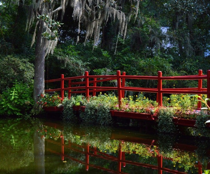 12. Nicole Nicolodi took this stunning photograph at Magnolia Plantation.