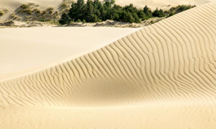 3) Oregon Dunes National Recreation Area