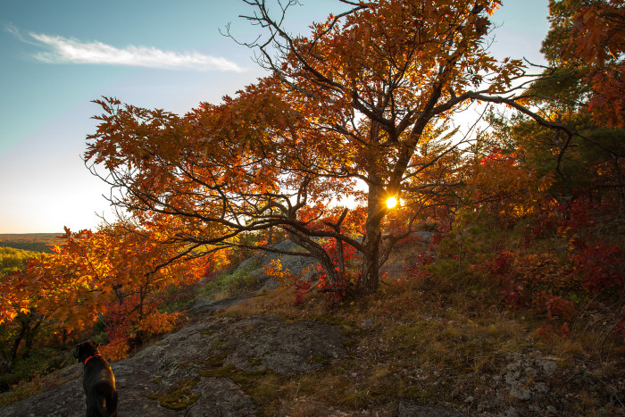 12) Check out the fall colors