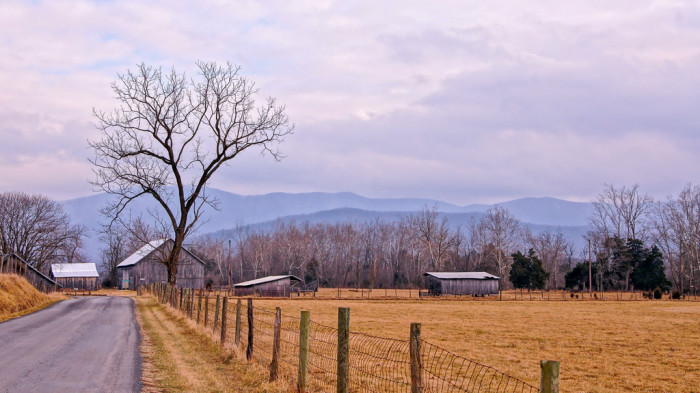 9. Take in the beauty of old farms on country roads through Page Valley near Luray.