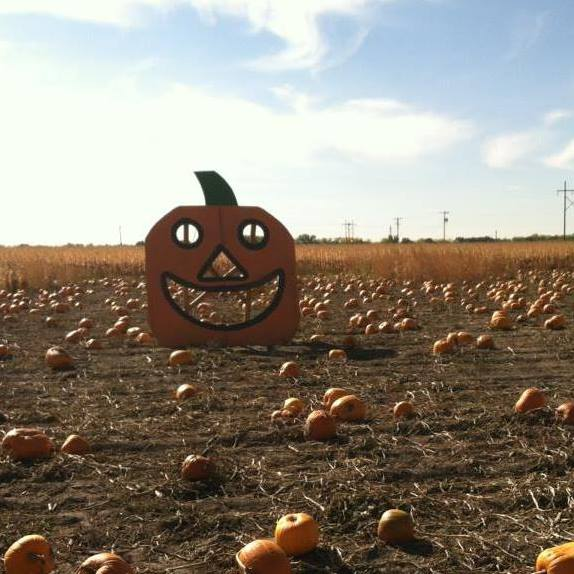 14. The Prairie Fire/Eagle Radio Pumpkin Patch Pumpkin Patch and Hay Maze, Golden Spike Tower, North Platte