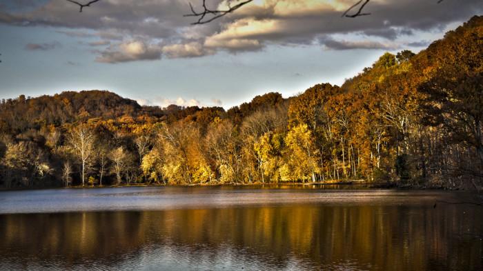 3) Radnor Lake