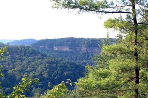 1. Red River Gorge.