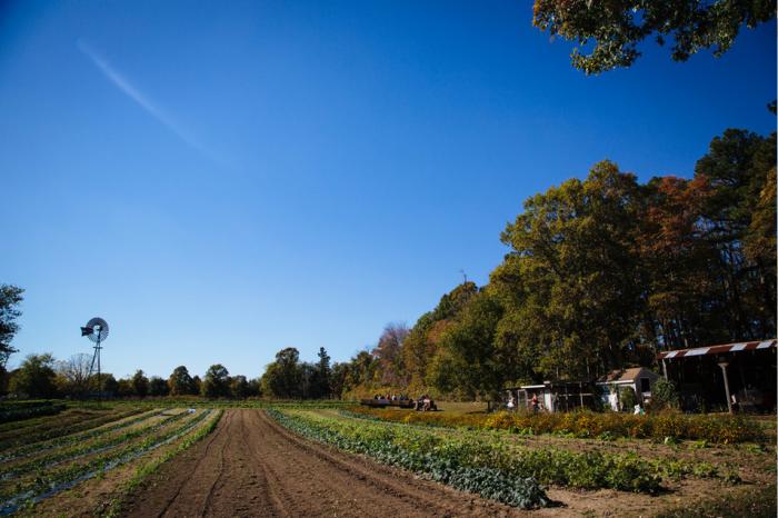 11. Silverton Farms, Toms River