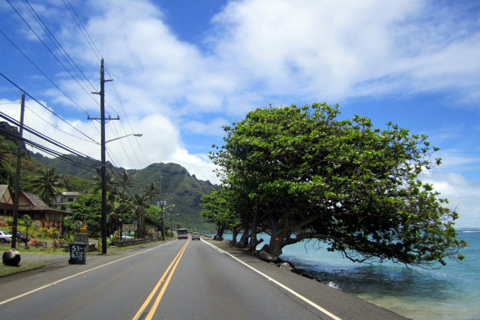 9) Take Kamehameha Highway and drive around the south, east and north shores of Oahu. With stunning beaches, gorgeous lookout spots, and majestic mountains, the drive is a perfect day trip to experience the true beauty of the island.