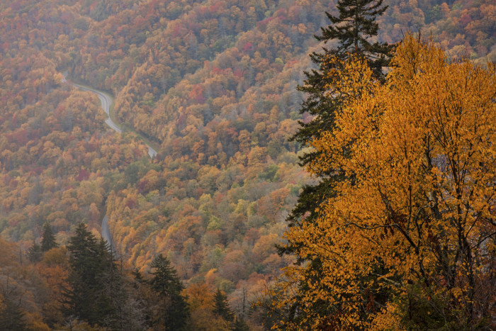 1) Finish up your autumn season - and begin it - by hiking into the gorgeous unknown.