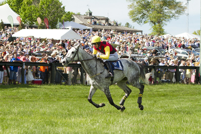 8. The Plains - The Virginia Gold Cup