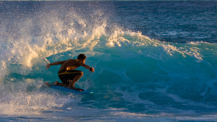 1) The surfer.