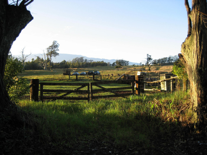 14) And lastly, there's this quaint farm in Honoka'a.