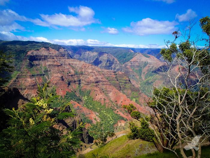 7) There is no better photo opportunity on Kauai than Waimea Canyon…