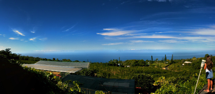 4) This panorama of a Hawaii coffee farm is lovely – and check out that ocean view!