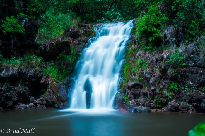 18) This photograph of Waimea Valley Arboretum and Botanical Garden, taken by Brad Mall Photography, is quite lovely.