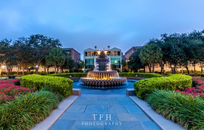 4. Tommy Henriquez took this magnificent photograph of the Pineapple Fountain in Charleston.
