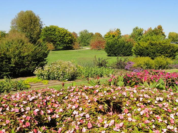 3. U of K Arboretum