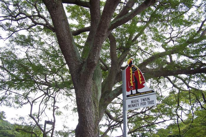 16) Waiohinu, Big Island