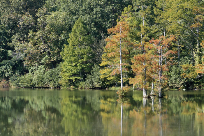 8. A setting rich in natural beauty, Wall Doxey State Park gets only more stunning in the fall.