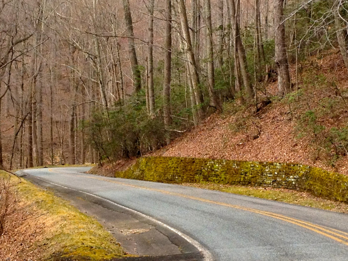 17. See the beauty of the Potomac at the end of tree-lined routes like this in Westmoreland State Park. Take Route 3 east to the park's entrance, just off of Route 347.