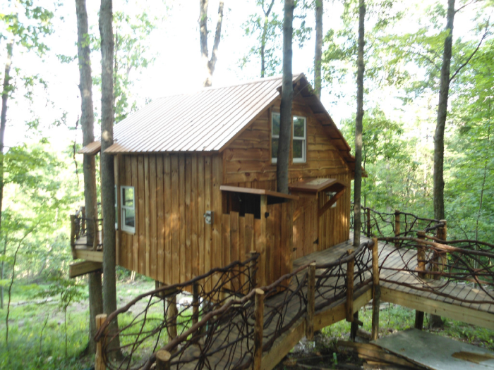 9. Indulge your childhood dreams and spend a night in the trees.