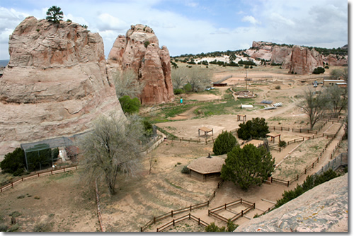 5. Navajo Nation Zoological and Botanical Park, Window Rock
