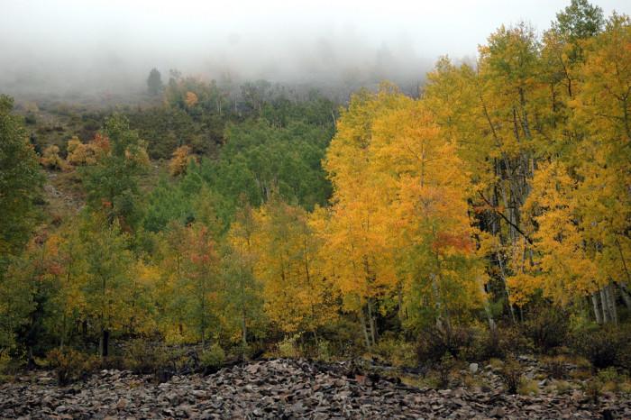 8) Abajo Mountains