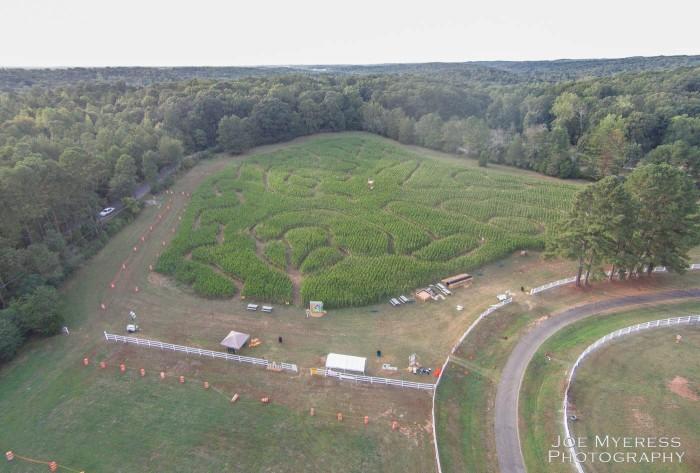 5. The Athens Corn Maze