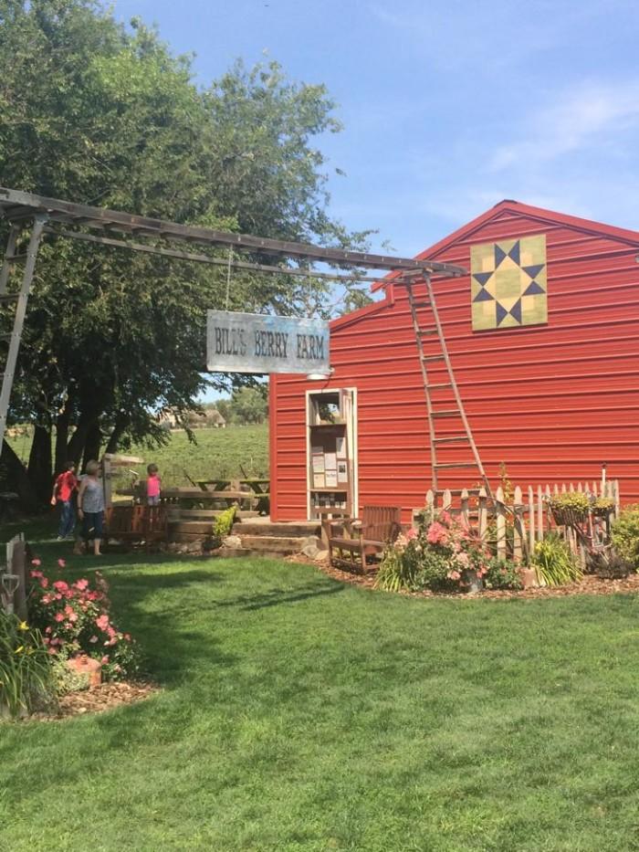 7. Bill's Berry Farm, Grandview