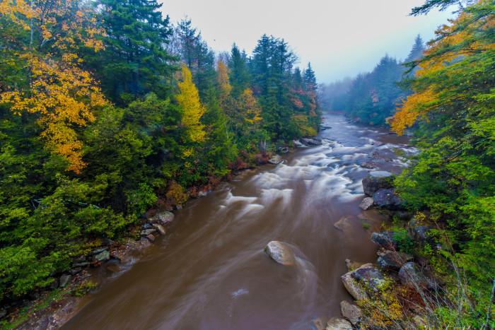 1. This photo of the Blackwater River as it runs through Davis, West Virginia.