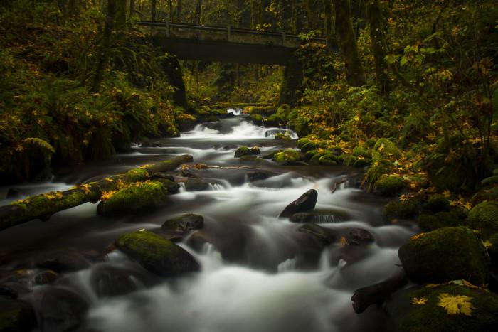 1) Bridal Veil Falls Trail (.6 miles)