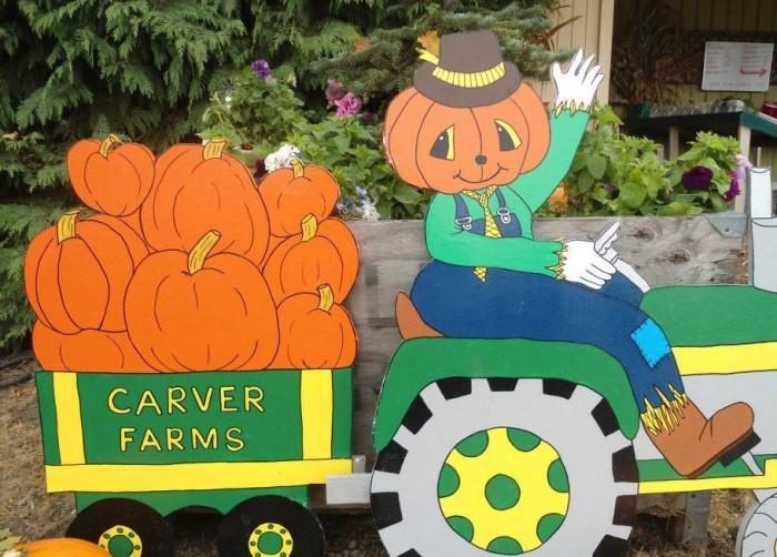 6. Carver Farms, Newman Lake